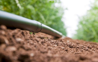 A picture of a drip irrigation line with water dropping out of it onto dirt and plants in the background.