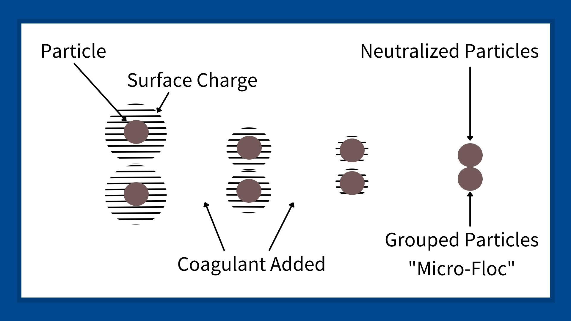 This image shows negatively charged liquid-suspended particles being neutralized with a coagulant. It shows how the particles slowly lose their negative charge and come together to form a larger particle.